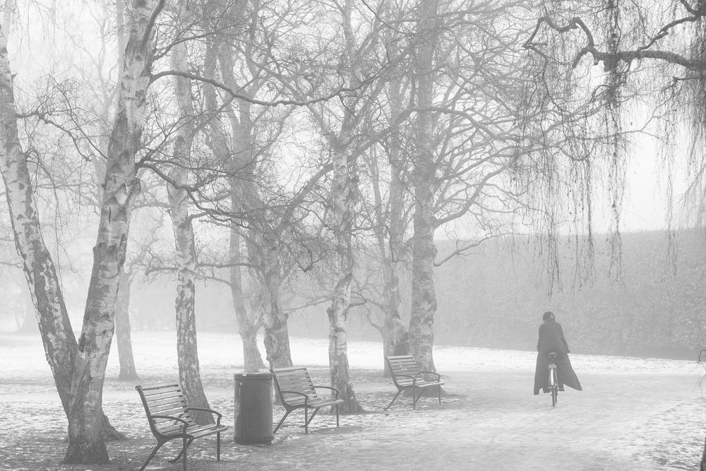 Winterfog-7351.jpg