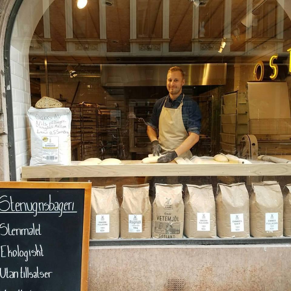 Fornkorn - hos Ostabengtsson! - Efter en något besvärlig skörd i augusti har vi nu glädjen att kunna berätta att anrika Ostabengtsson på Klostergatan i Lund har börjat baka med vårt mjöl i sitt nyöppnade bageri.Vi är så glada och stolta över hur fint de skyltar med vårt mjöl från Fornkorn!