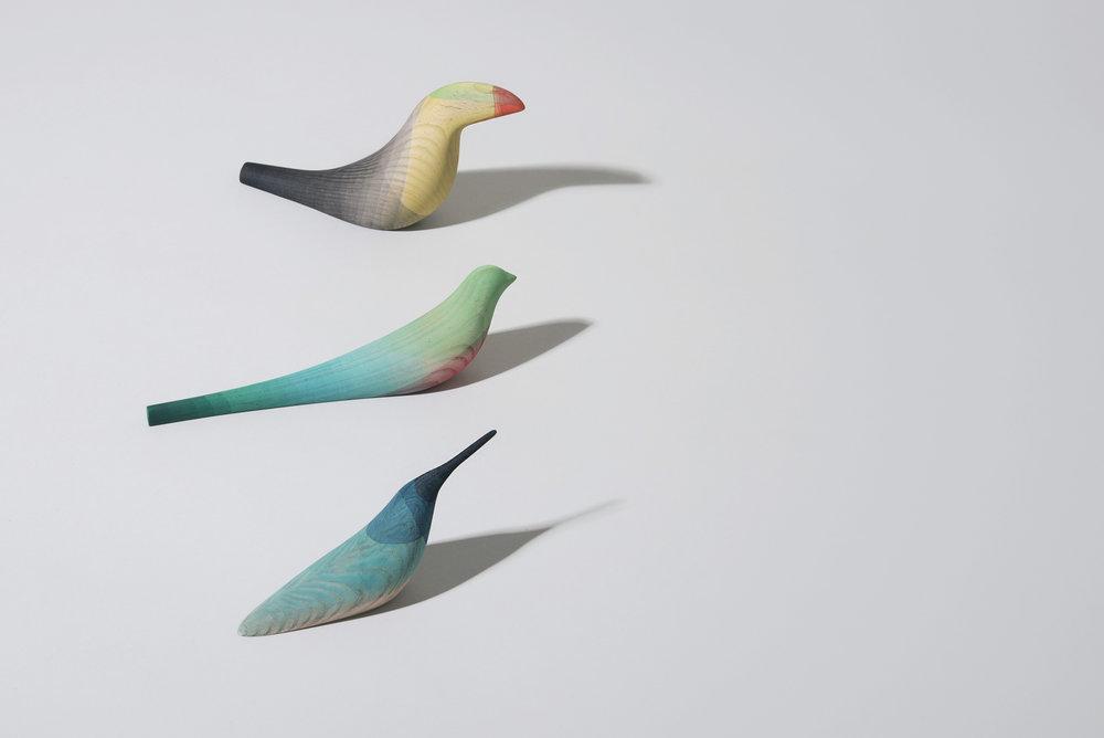 bird-10.jpg