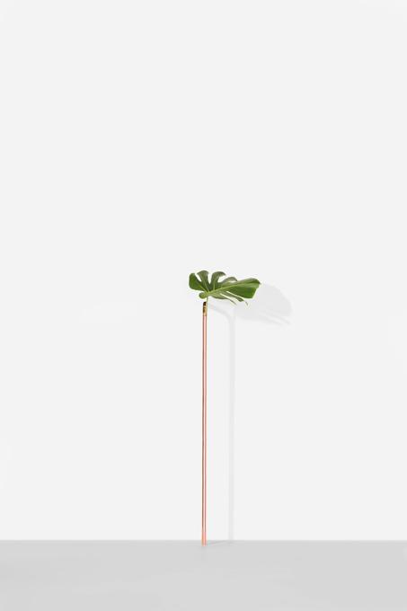 vaso+solo+piso+(3).jpg
