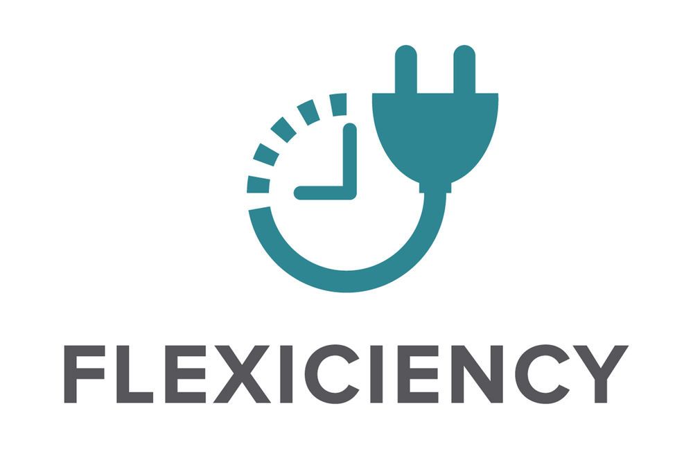 FLEXICIENCY_logo.jpg