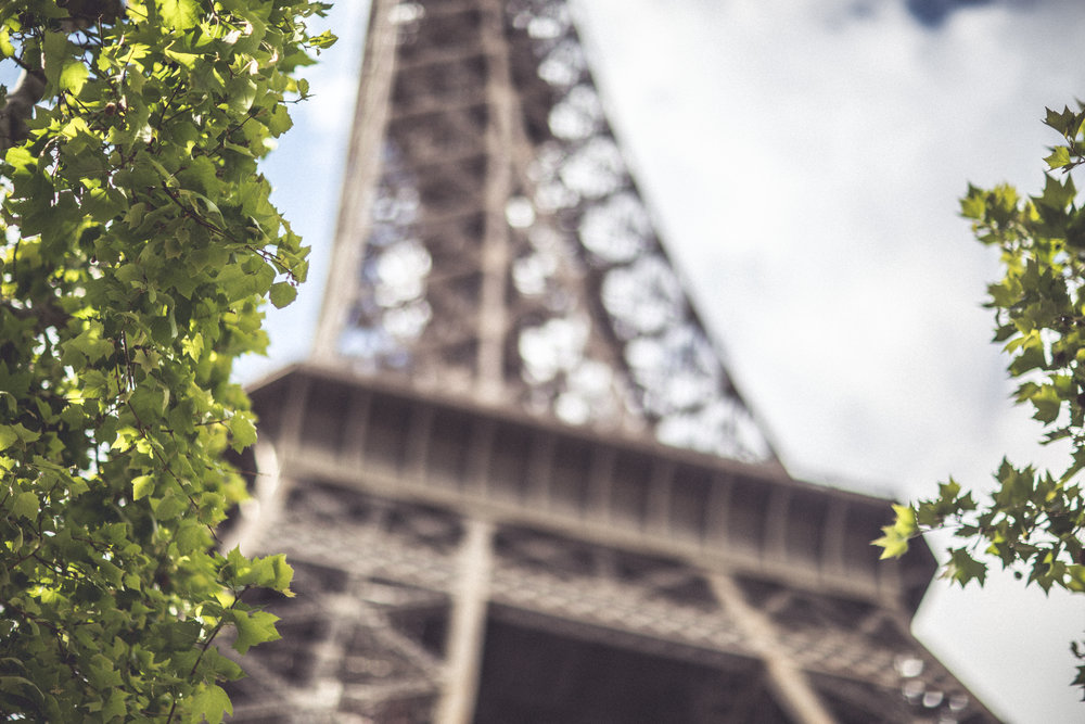 paris2017-9889.jpg