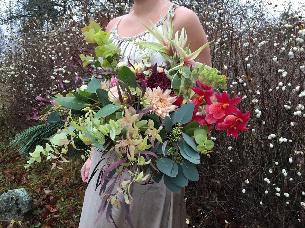 Amaryllis, orkidé, krysantemum, olika sorters eukalyptus, gran