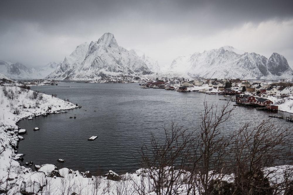 Wedding + Norway + Lofoten.jpg