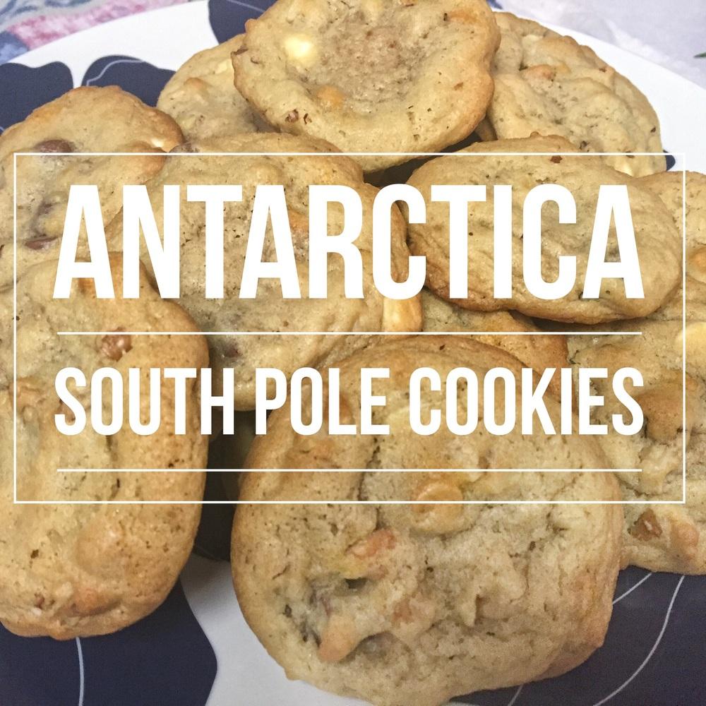 south pole cookies.jpg