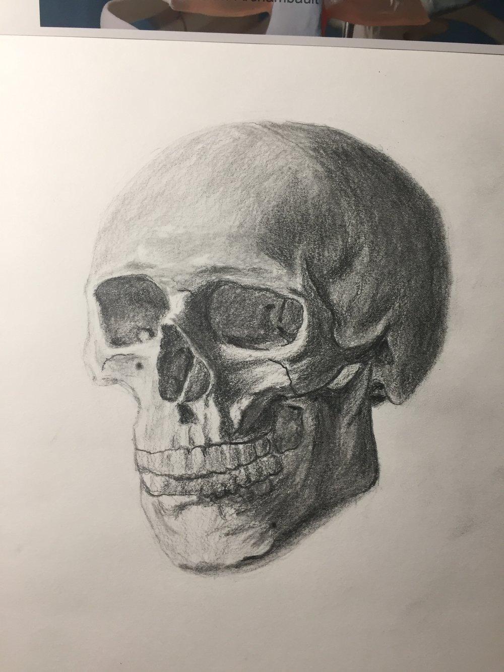 Skull 2.💀