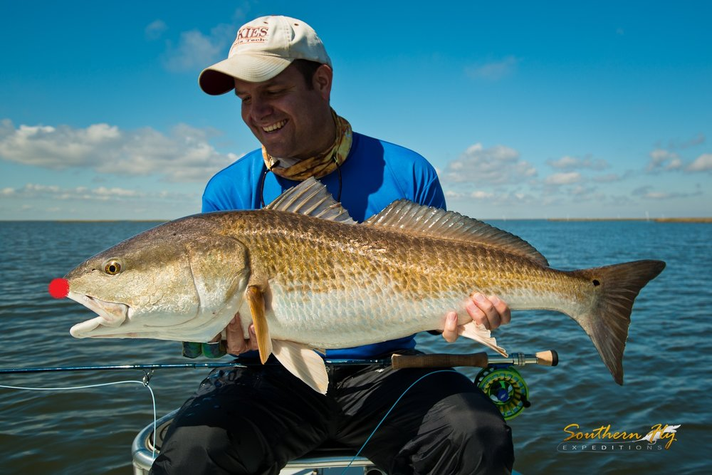 Rudolph the Rednose Redfish