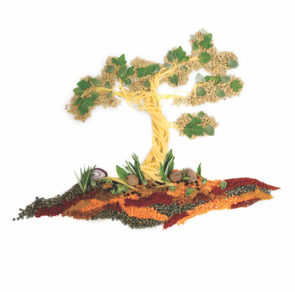 Vegan Linguine Lentil Ragu tree