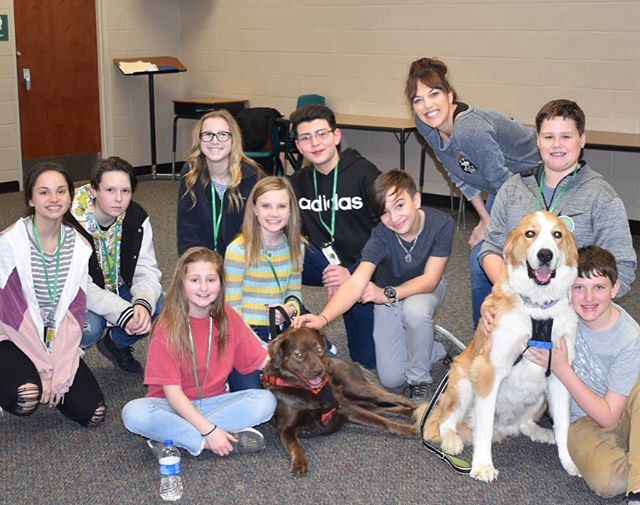 Big Paws of the Ozarks - Extending life to our furry children.