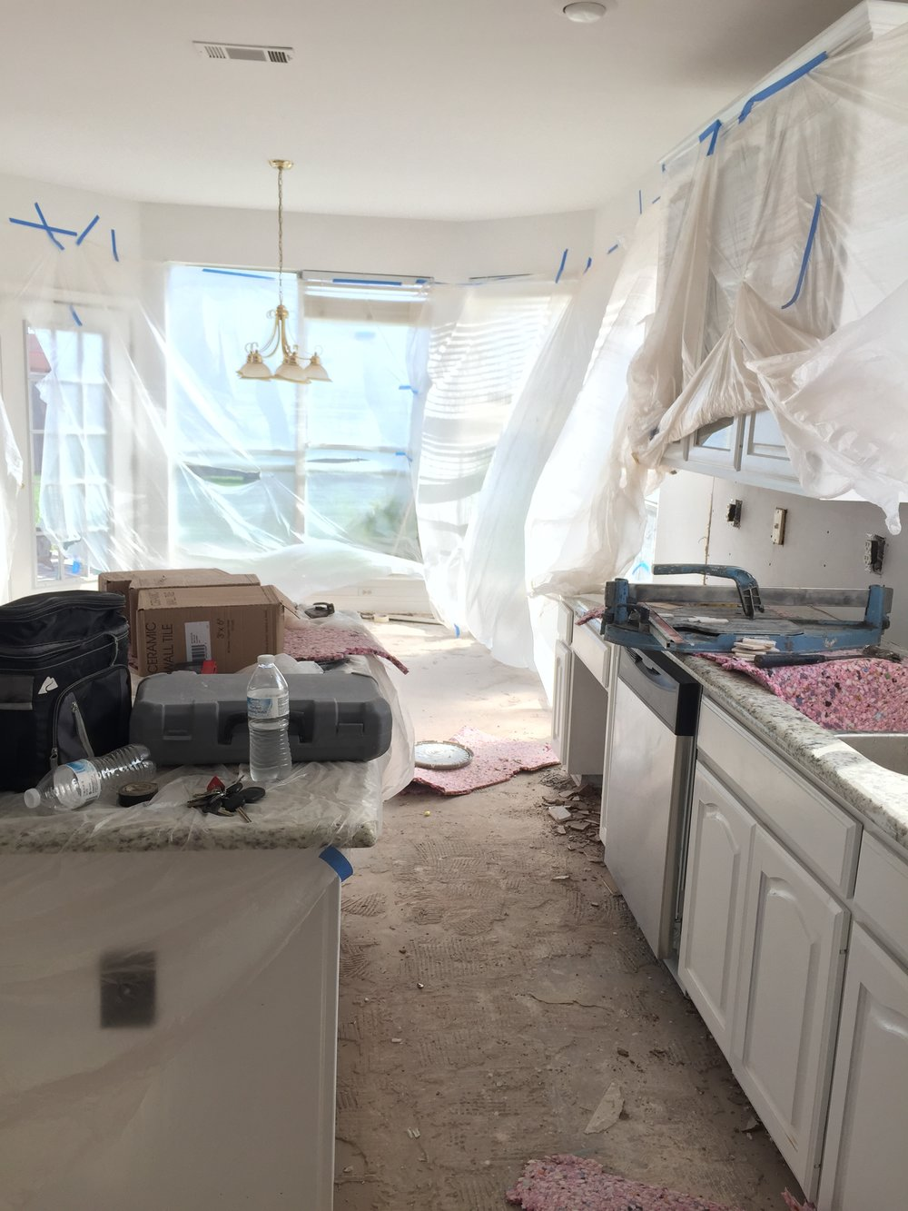 Mid-kitchen overhaul. Now THIS is my dream situation with two dogs and a toddler and working from home. Just.Kidding. We ate a lot of Spongebob microwave macaroni.