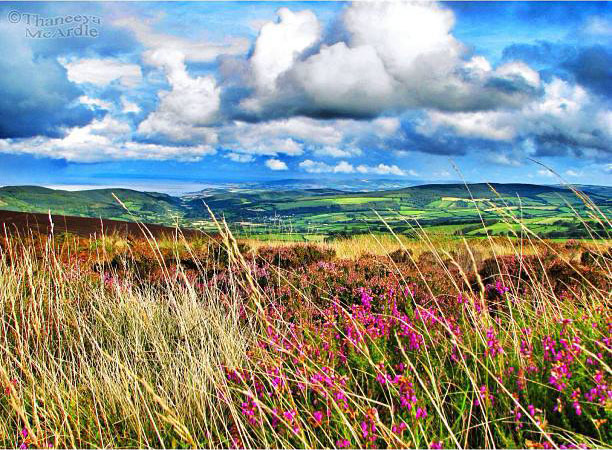 Exmoor Photo by Thaneeya McArdle