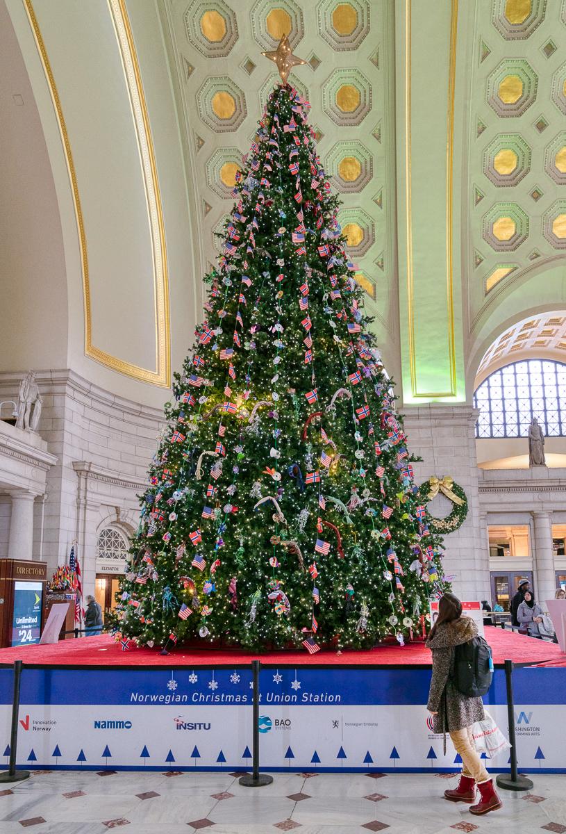 Christmas Tree at Union Station - Washington, DC.