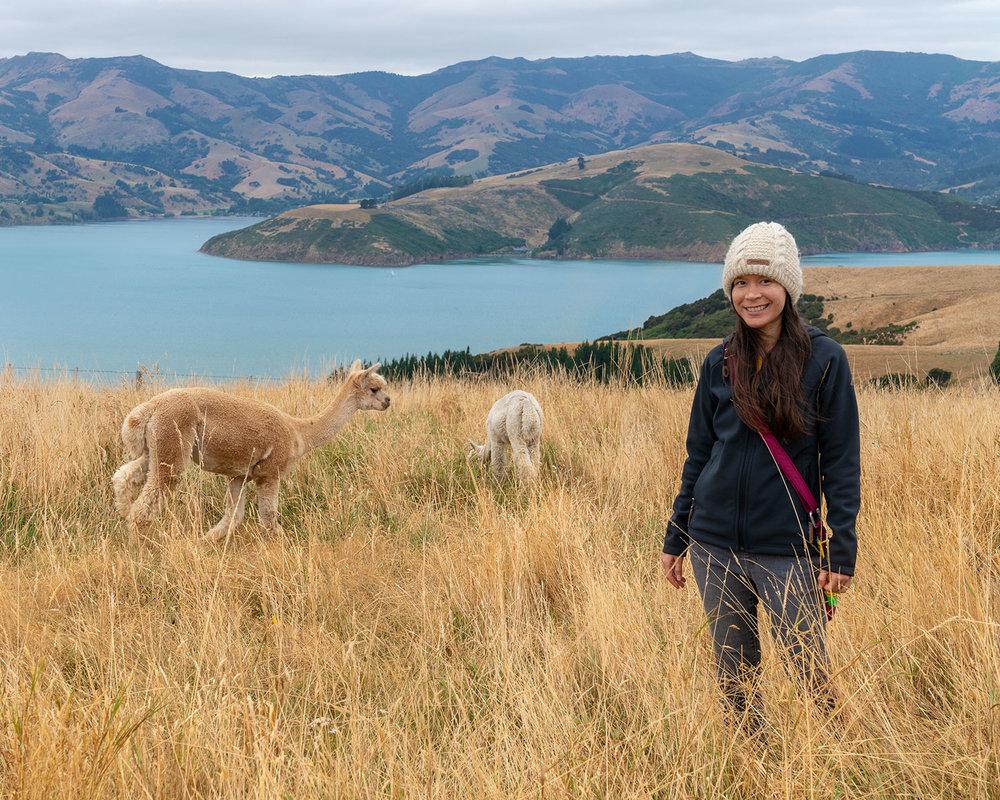 Thaneeya McArdle at Shamarra Alpaca Farm in Akaroa, New Zealand