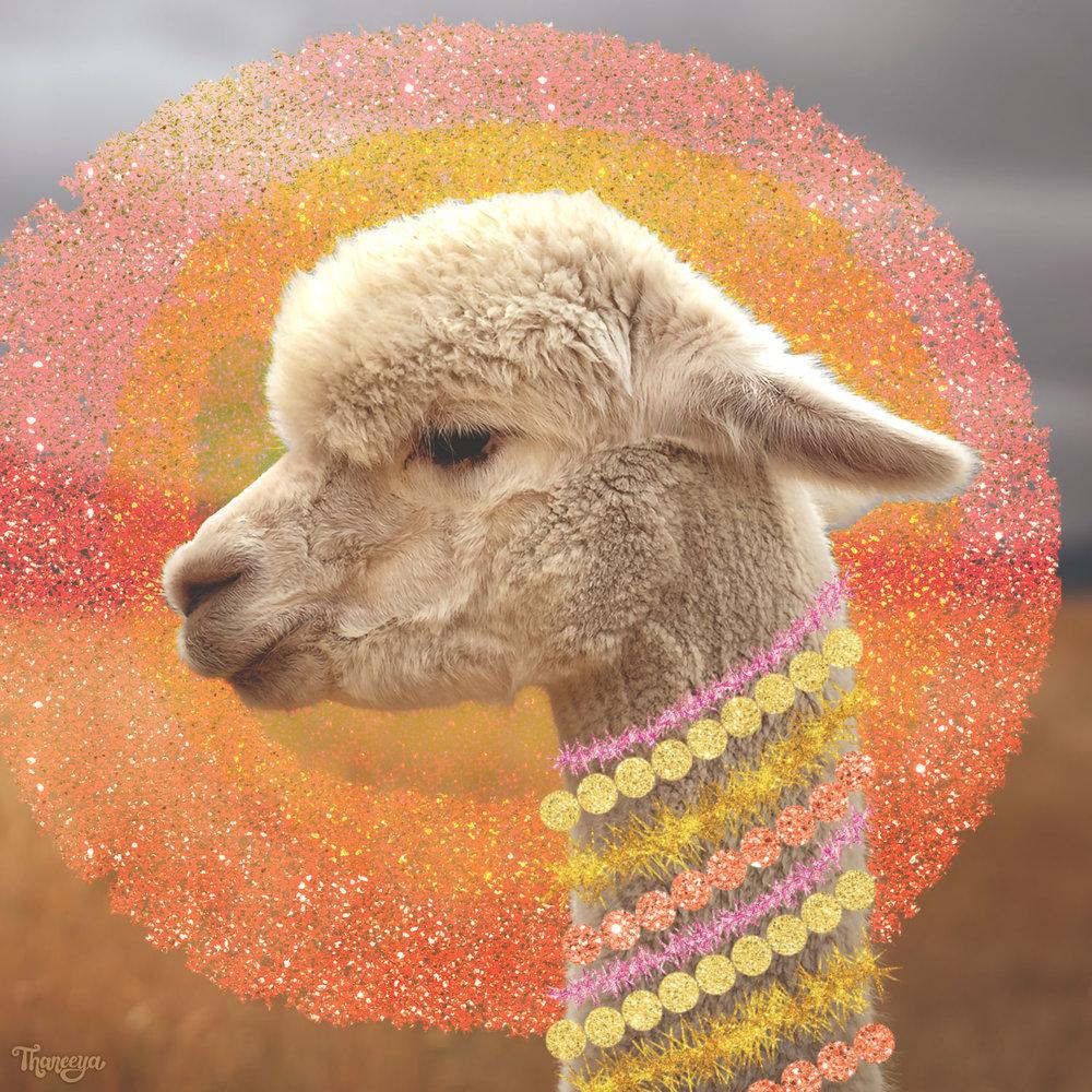 Thaneeya's Glam Photo edit of a Boho Alpaca