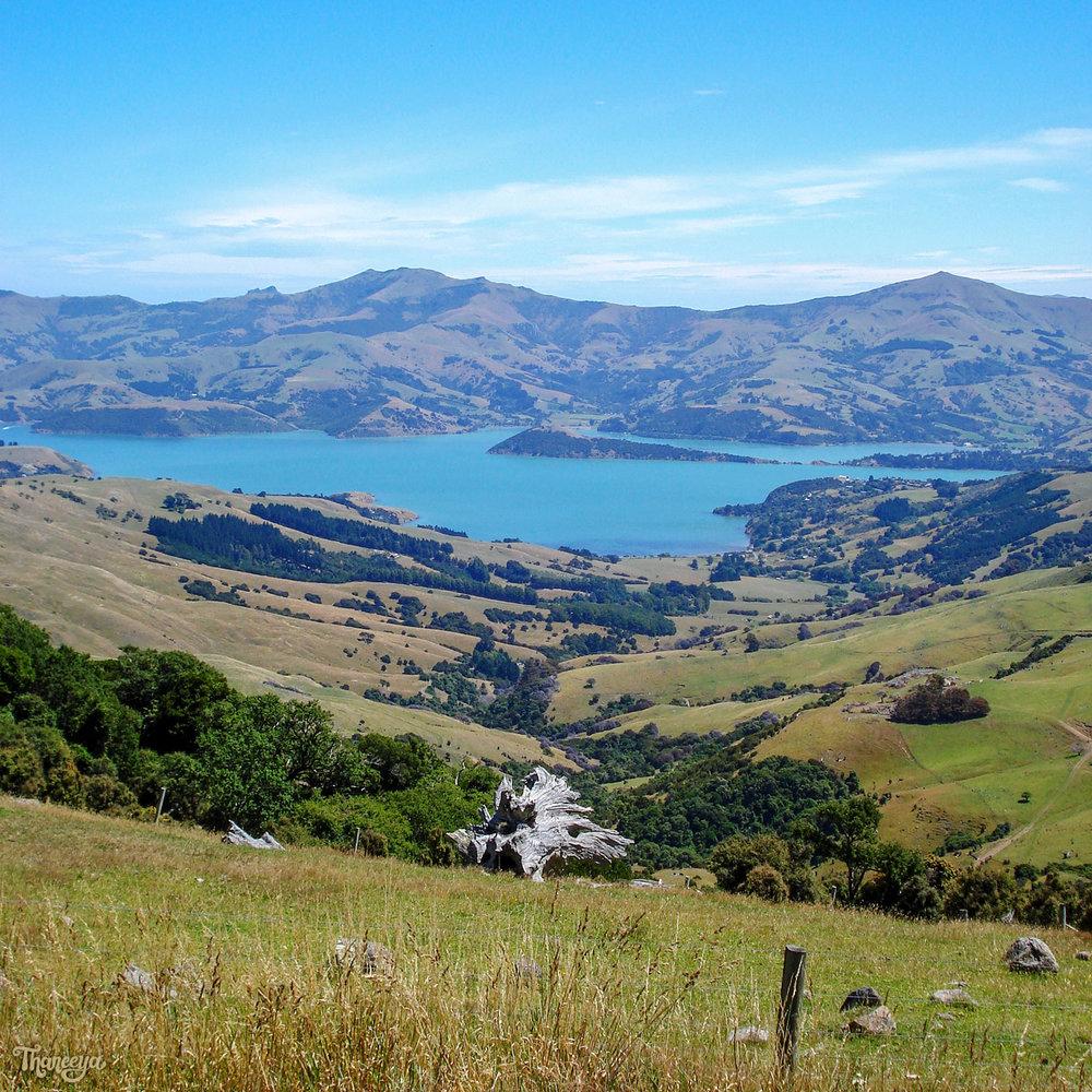 Banks Peninsula, New Zealand. Photo by Thaneeya McArdle.