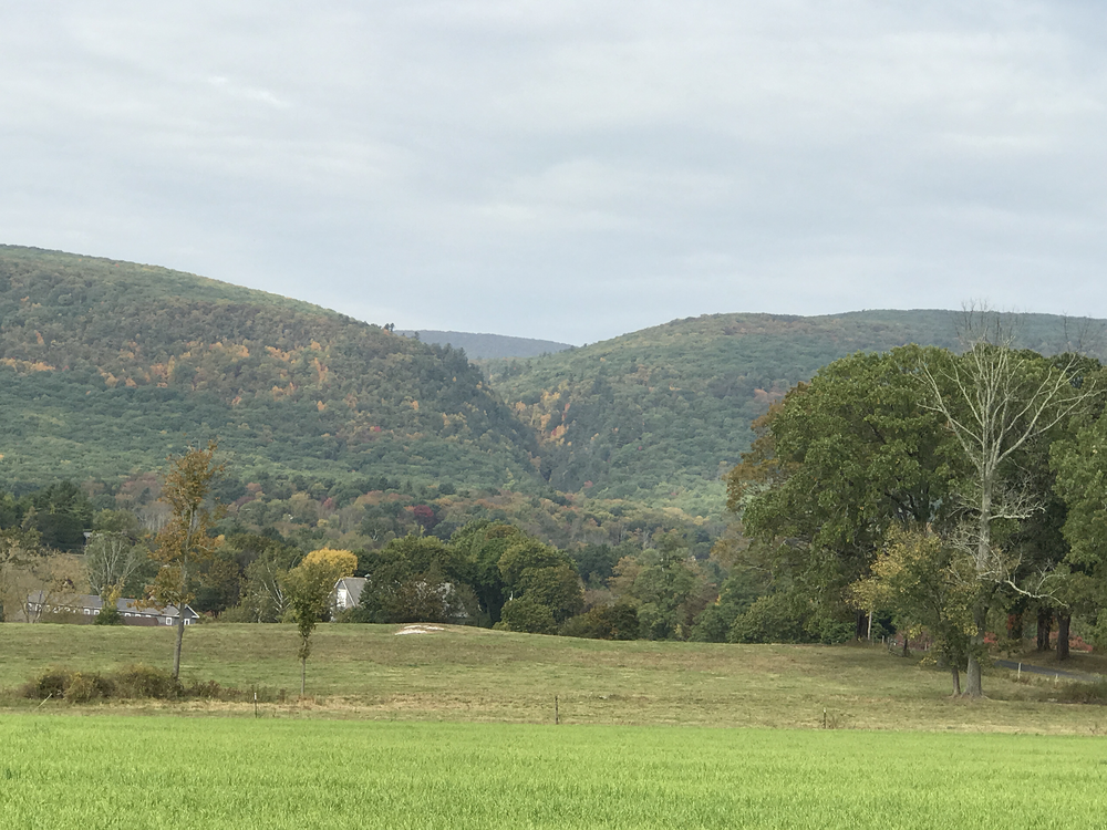 Fall in the Berkshires, CT