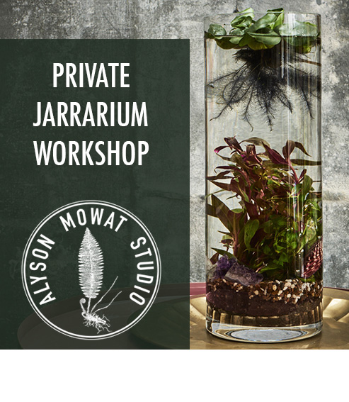 Copy of Copy of Private Jarrarium Class