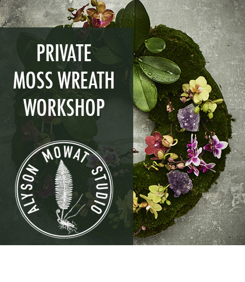 Copy of Copy of Private Moss Wreath Workshop