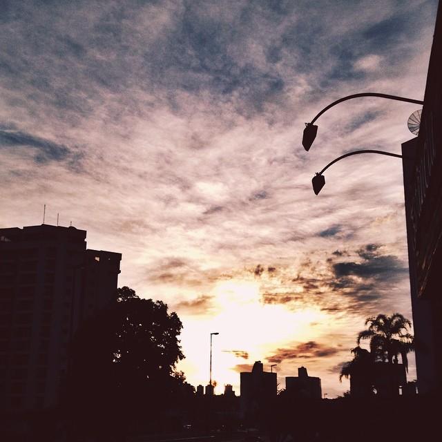 fernanda_tlusty_the_sun_gallery_2