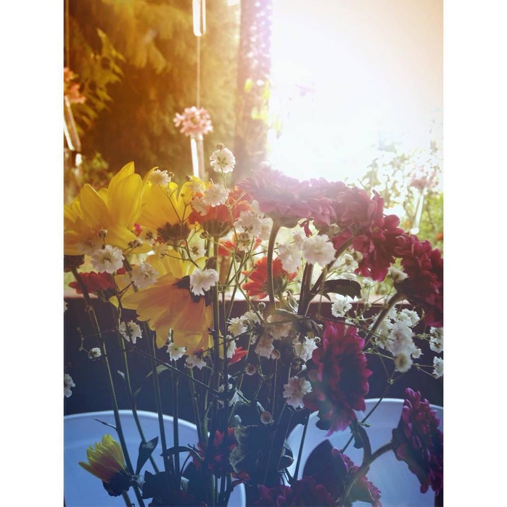 fernanda_tlusty_the_sun_gallery_5