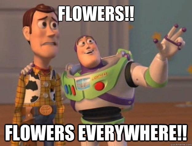 Há flores por todos os lados