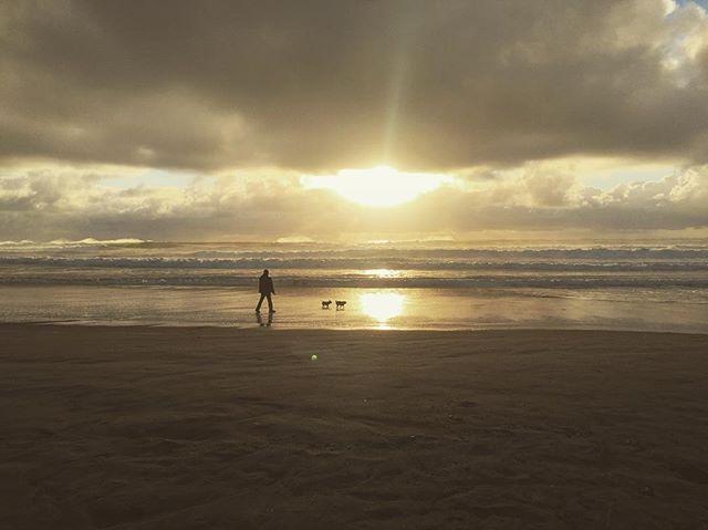 #california #sunset #clouds #dog #summer #beach #ocean