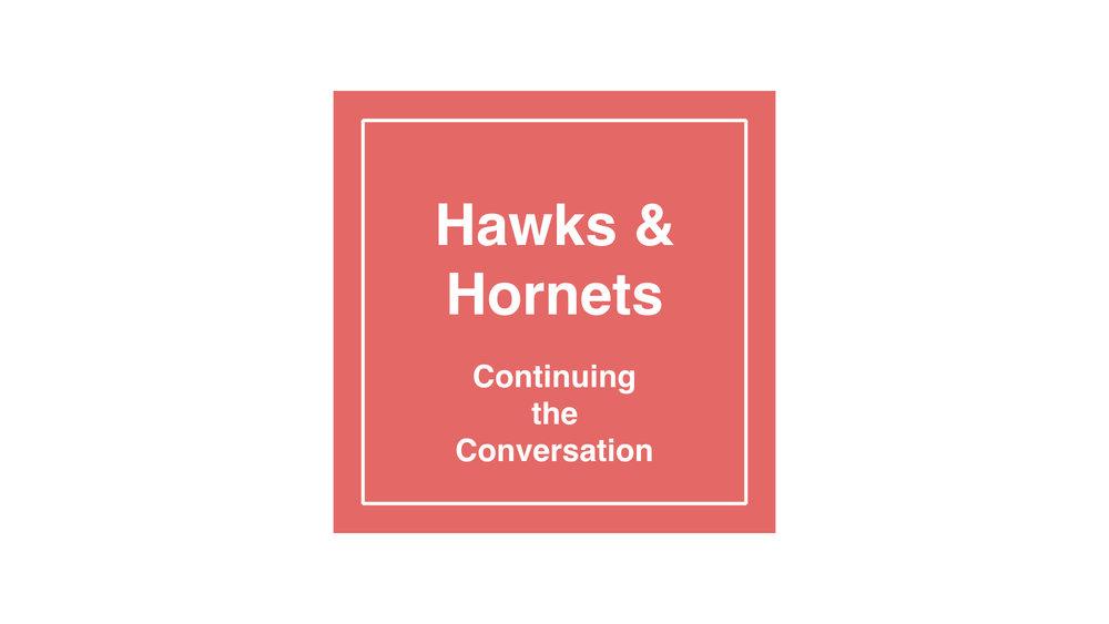 Hawks & Hornets 3.002.jpeg