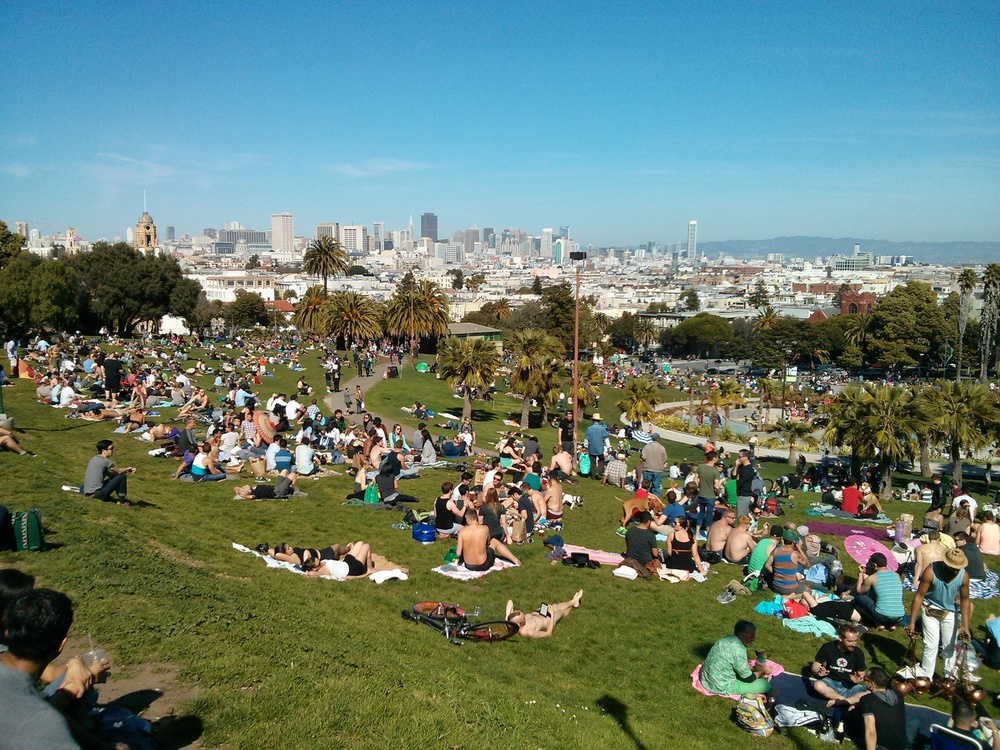 "Declare Dolores Park a ""No-Flex Zone"""