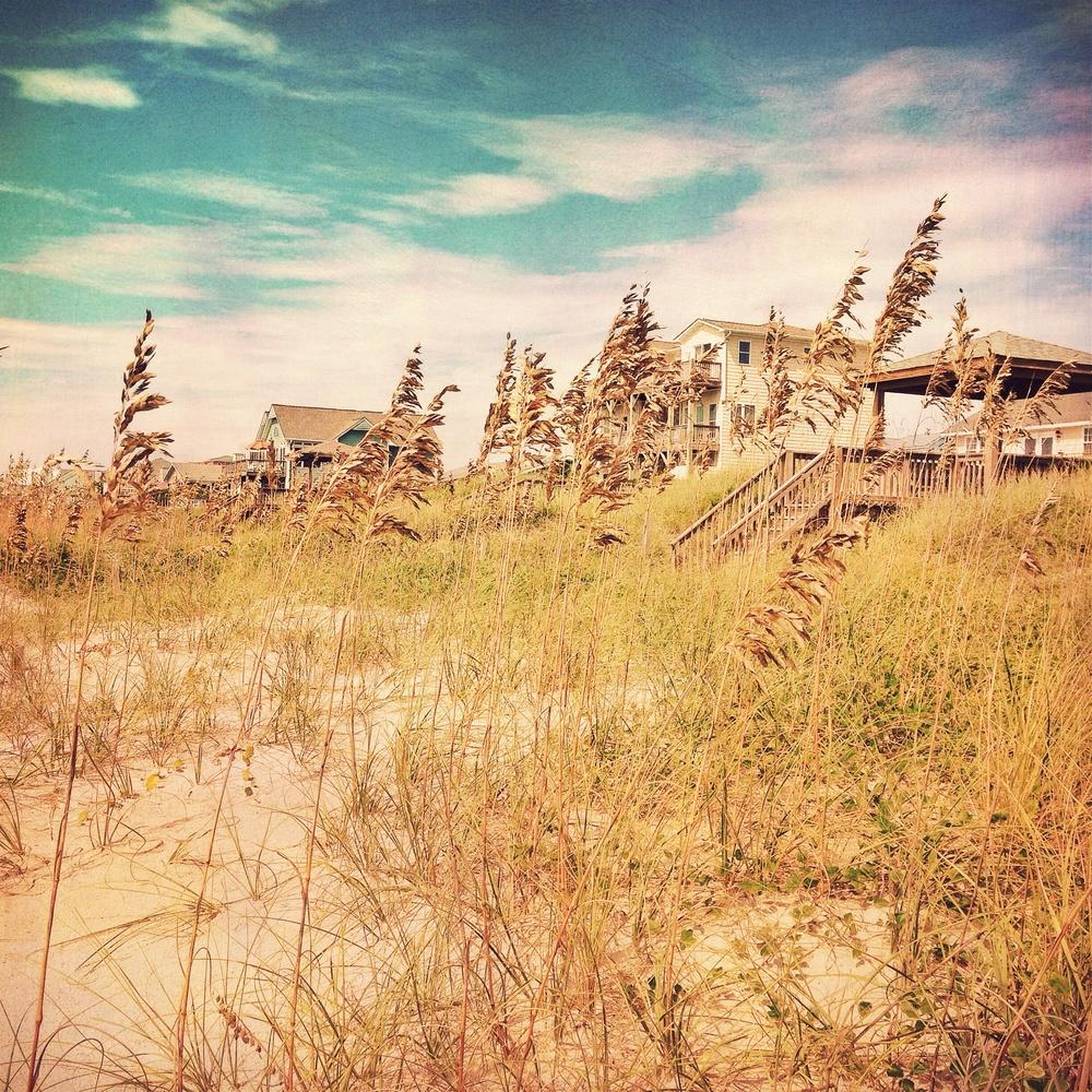 grassy-homes2.jpg