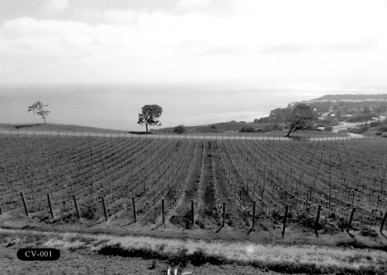 CV-001: Catalina View Gardens, 6001 Palos Verdes Dr S, Rancho Palos Verdes, CA 90275.