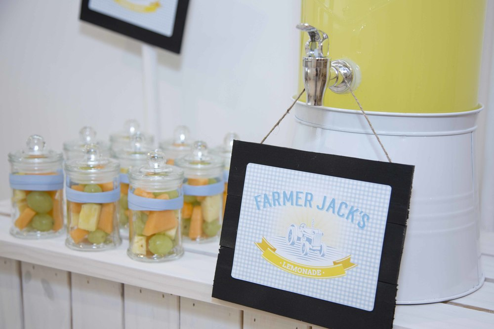 Fruit styled by Something Wonderful Happened for farm themed lemonade stand