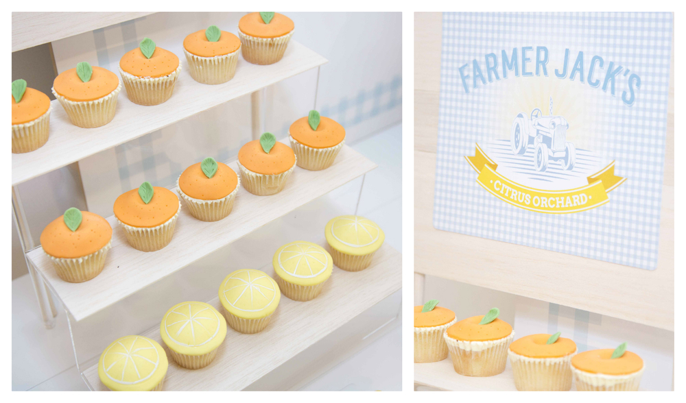 Food ideas for farm kids party by Something Wonderful Happened