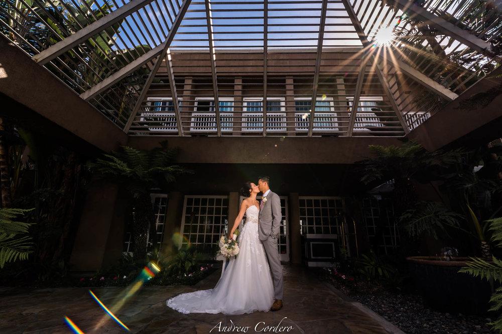 The_Portofino_Hotel_&_Marina_Wedding_Paul_&_Mina-9732.jpg