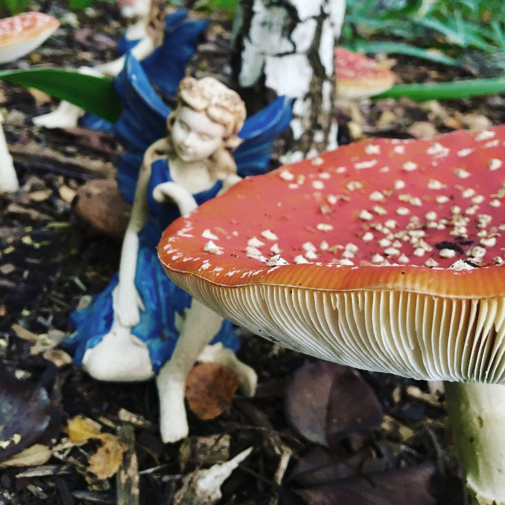 mushroom-fairies.jpg