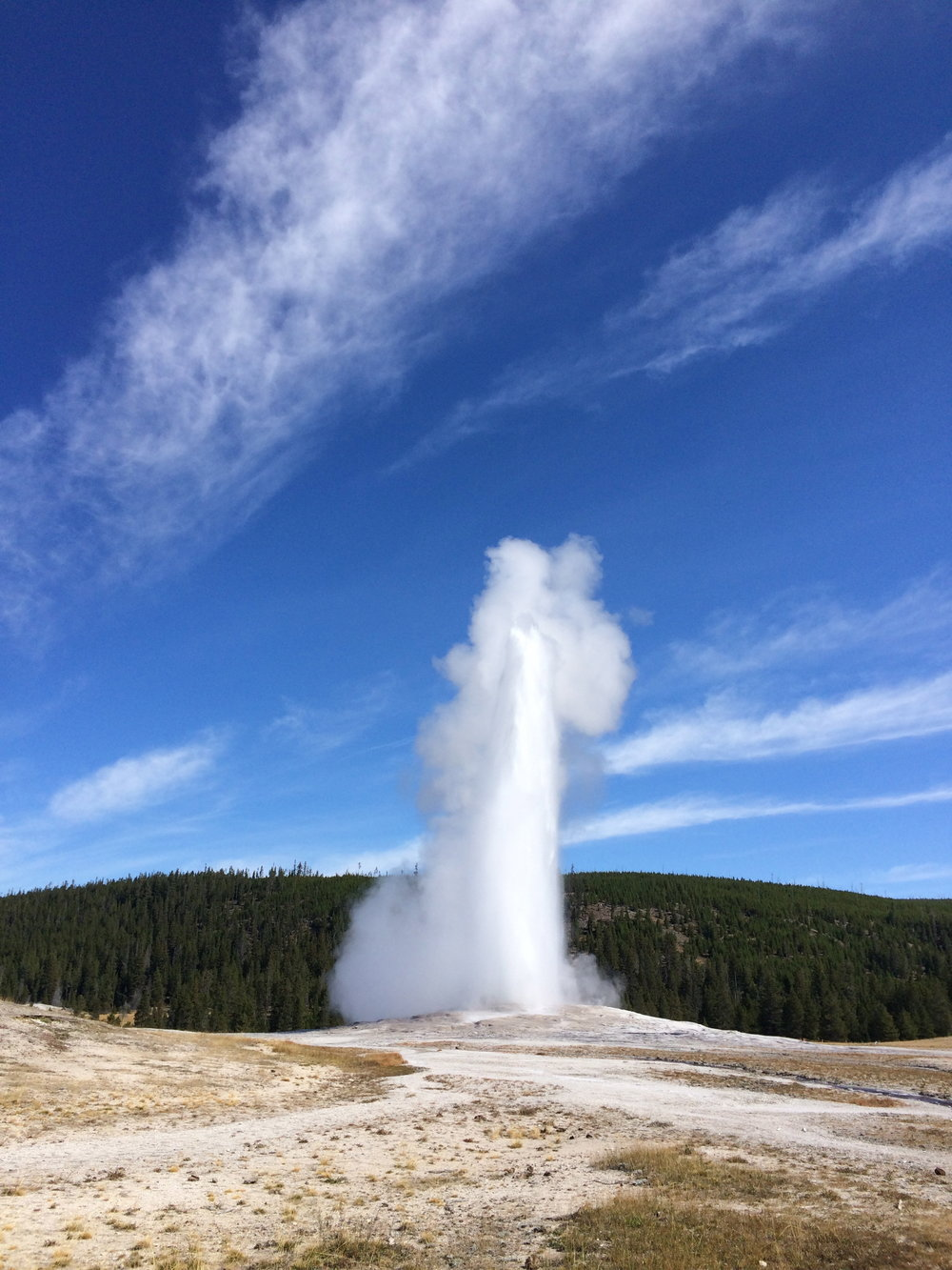 Old Faithful, right on time.