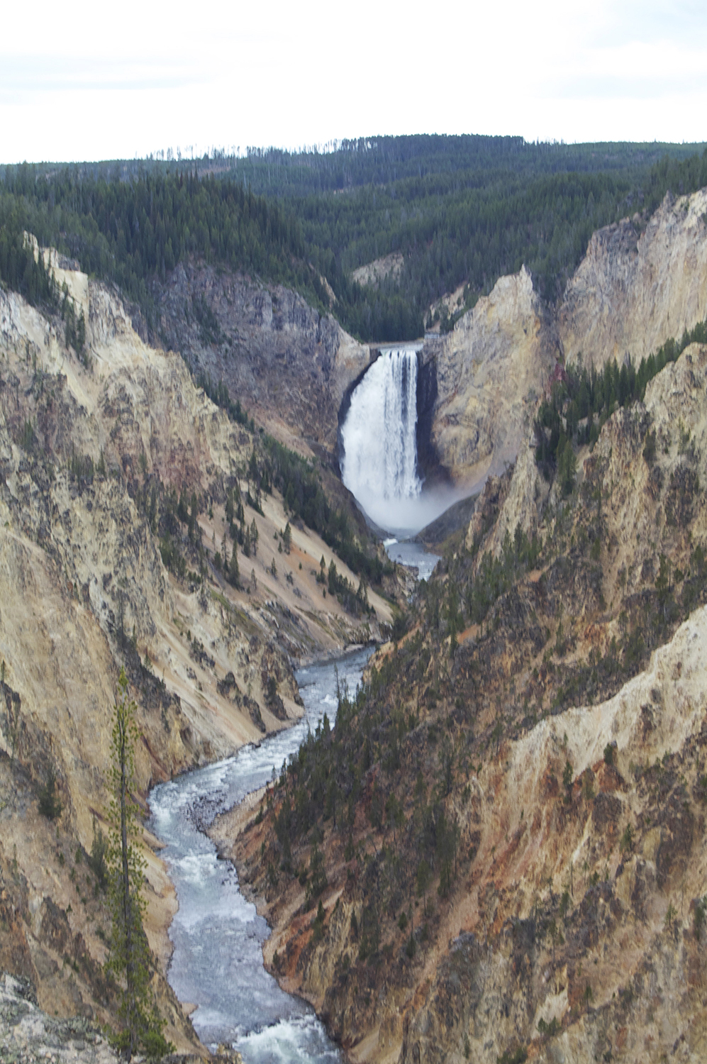 Grand Canyon of the Yellowstone from Artist's Point overlooking the falls.