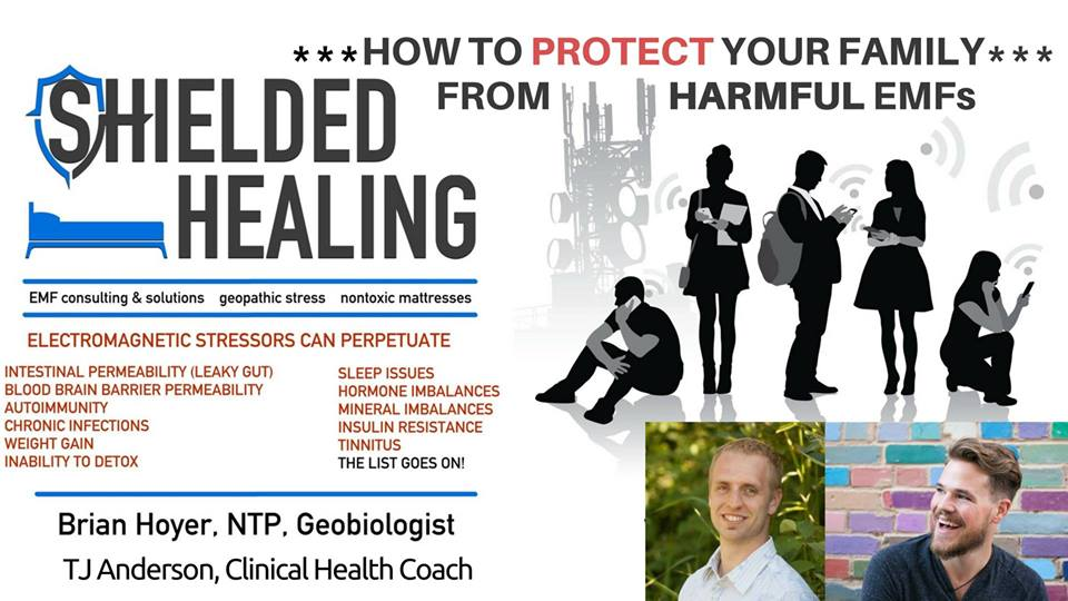 Shielded Healing: How to Protect Your Family from Harmful