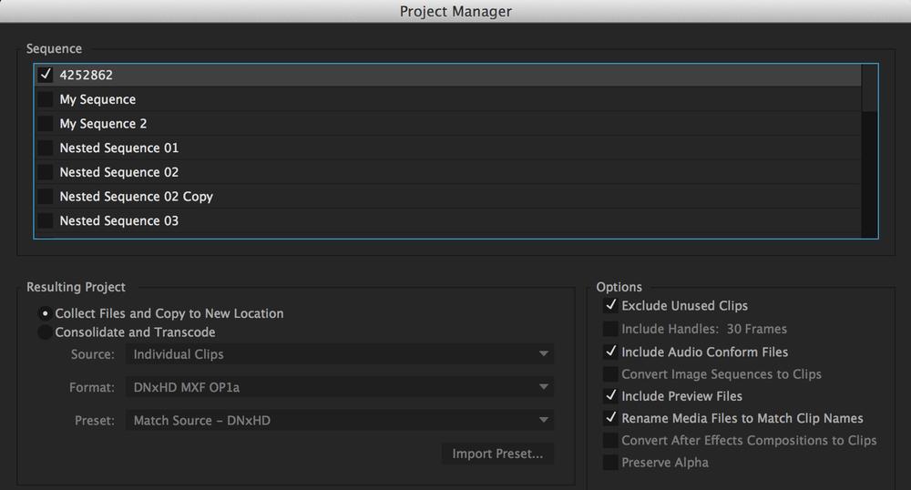 Premiere Pro CC 2015 Project Manager