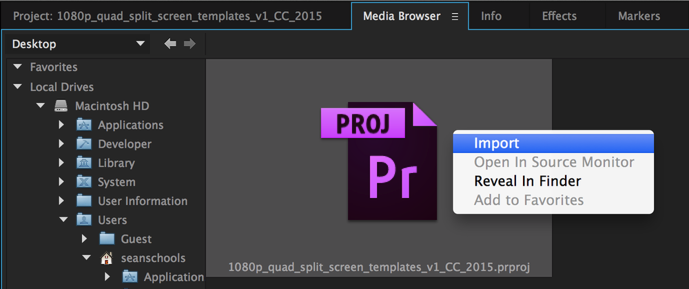 Import Quad Split Screen project file in the Media Browser