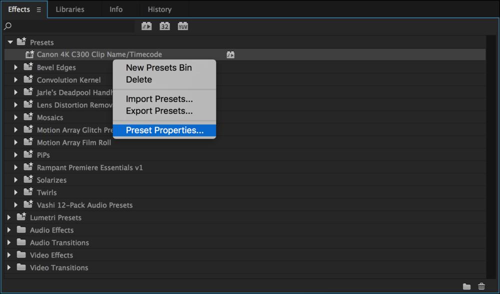 preset-properties-premiere-pro