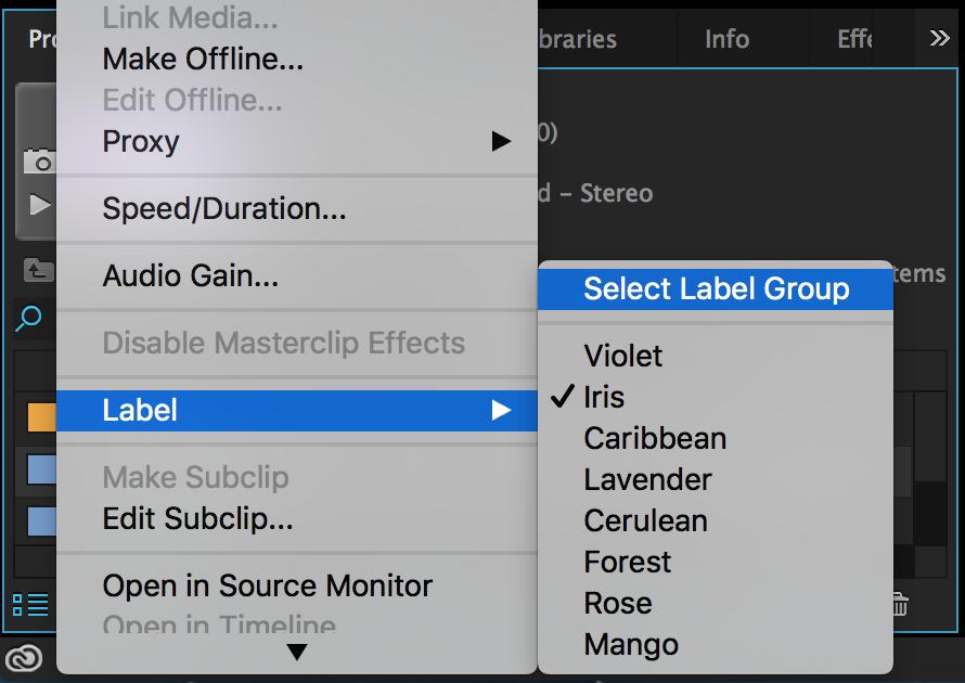 premiere-pro-select-label-group
