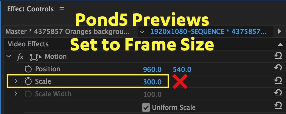set-to-frame-size-value-pond5-premiere-pro.jpg
