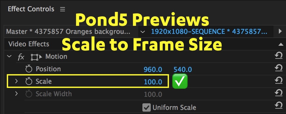 scale-to-frame-size-value-pond5-premiere-pro.jpg