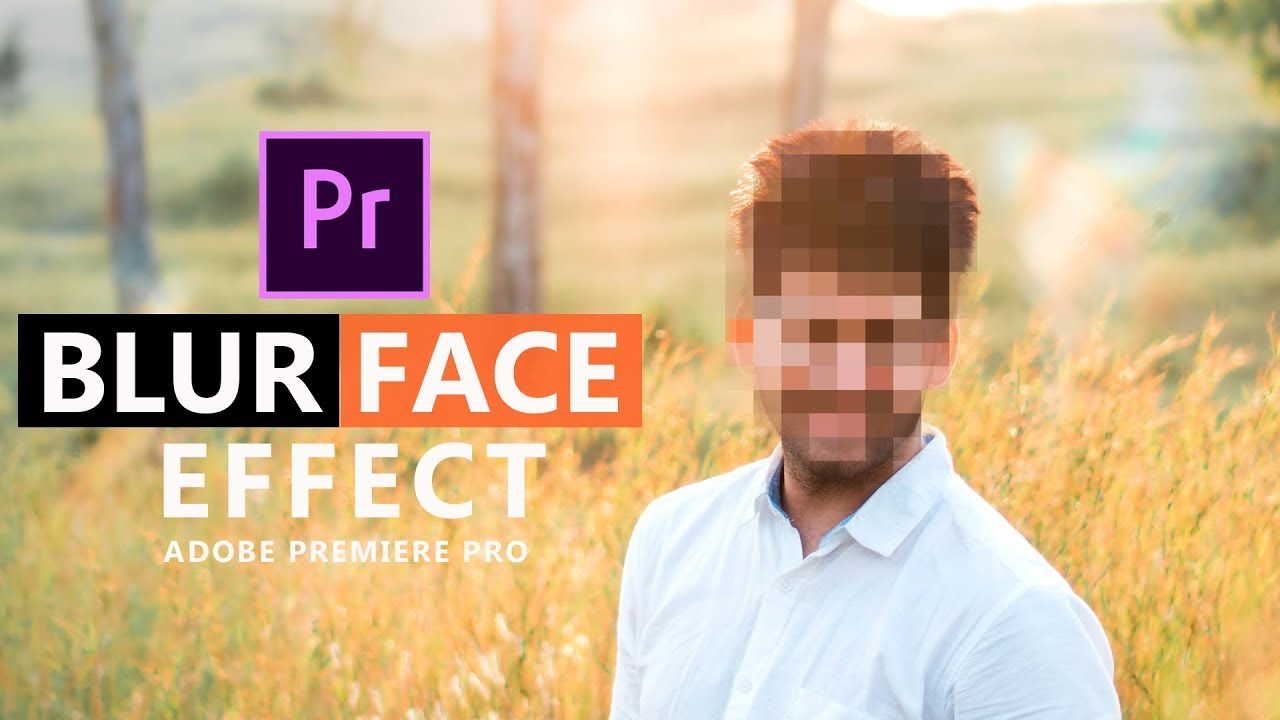 Premiere in Post — Premiere Bro