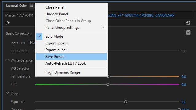 save-LUT-preset-premiere-pro.jpg