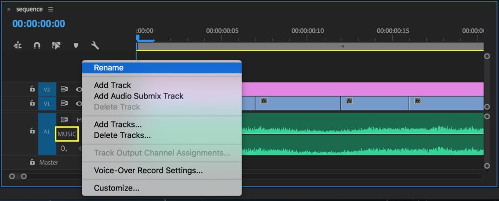 Rename tracks in Premiere Pro