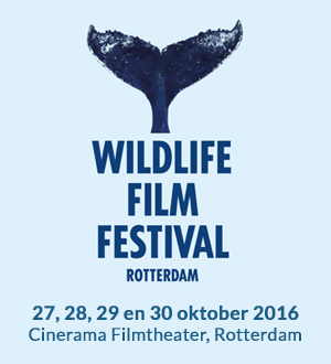The Wildlife Film Festival in Rotterdam 2016, 27-30 October 2016. Screenings: Saturday 29th of October, 11:15 AM, Sunday 30th of October, 10:10 AM. More information:   http://www.wffr.nl/