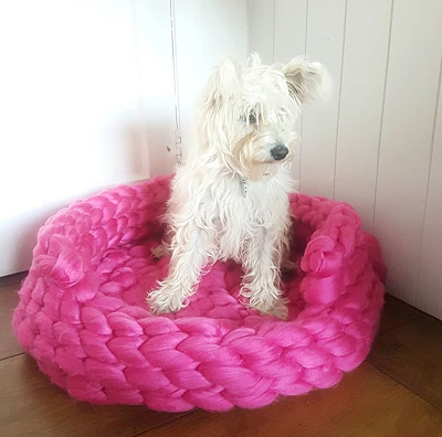 Alice the Westipoo chunky blanket dog cat basket opt.png