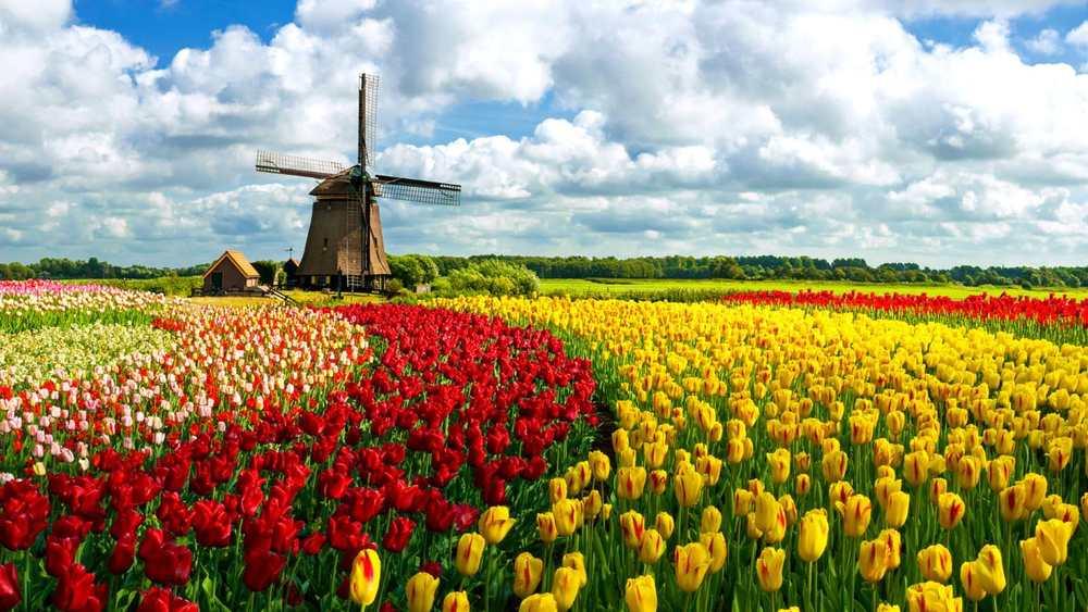 Holanda</a>