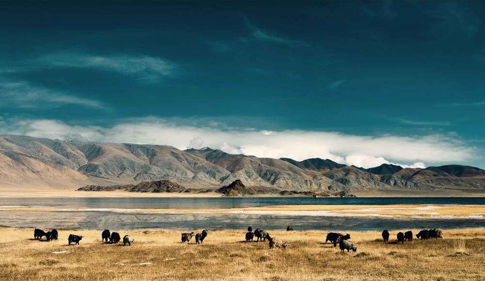 Mongolia</a>